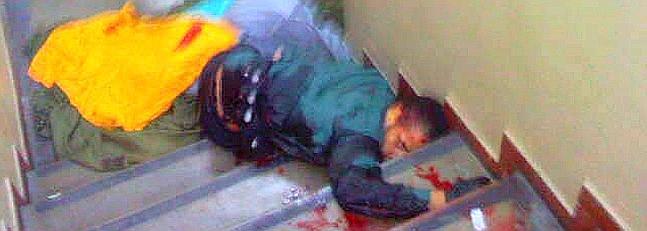 Asesino de Brasil