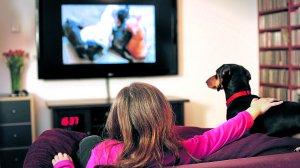 Un perro y su dueña contemplan la emisión del nuevo canal.