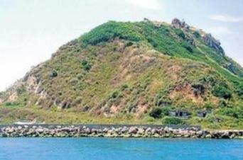 En 1911, las autoridades turcas dejaron abandonados a 80.000 perros en esta isla, sin nada.