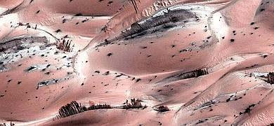 Lo que parecen árboles en la superficie marciana son en realidad dunas de arena cubiertas de CO2 congelado o hielo seco.