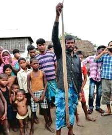 Mohammad Salamudín Miya, de 40 años, estaba labrando su arrozal en el pueblo de Badauda, cuando una cobra blanca le mordió