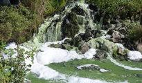 Vertidos de aguas residuales en Doñana