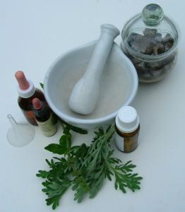 Conferencia «La terapéutica con plantas medicinales»