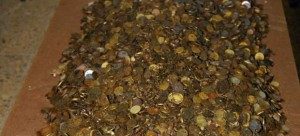 Monedas robadas en el santuario de Covadonga. Los ladrones han sido detenidos (Guardia Civil)
