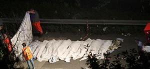 Varios cadáveres en la carretera.