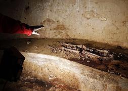 Restos óseos de la tumba de la familia de la Mona Lisa.