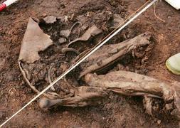 La momia irlandesa datada en 4.000 años