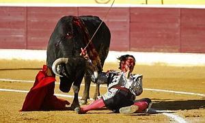 El torero 'Morante de la Puebla', en el momento de ser herido en Huesca.