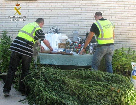 Plantas y efectos confiscados en Bétera.