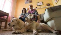 Nala y Greta, junto a sus dueños, Inmaculada Rodríguez y Nicolás García. / Foto: Ideal