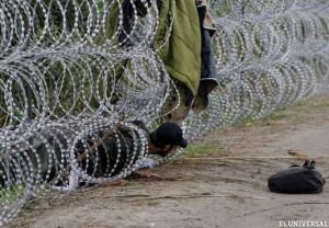 Inmigrante ilegal intenta ingresar a Hungría por debajo de una valla de alambre de púas
