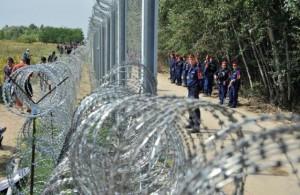 Valla entre Hungría y Serbia