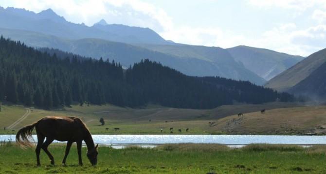Un caballo junto al lago Kara-Kul, en el valle de Chon-Ak-Suu, en Kirguistán
