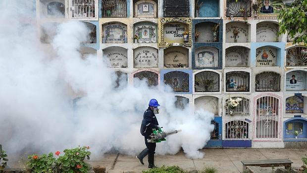 Fumigan zonas contra el Aedes aegyti, el mosquito vector de la enfermedad del Zika