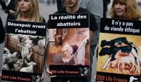 Defensores de los animales protestan contra el maltrato en los mataderos el 26 de septiembre de 2015 en la Plaza del Palacio Royal en París