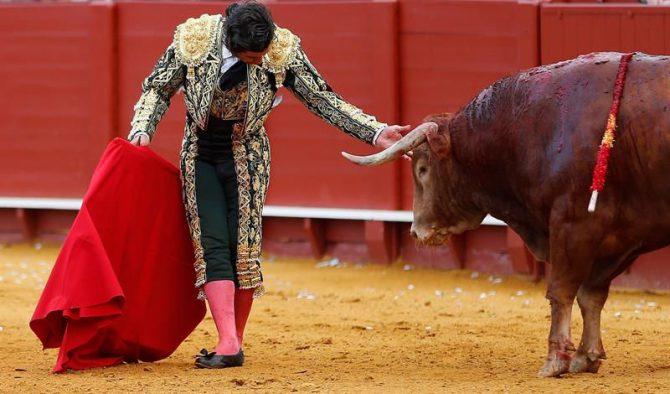 El matador de toros Morante de la Puebla, en la Real Maestranza de Sevilla.
