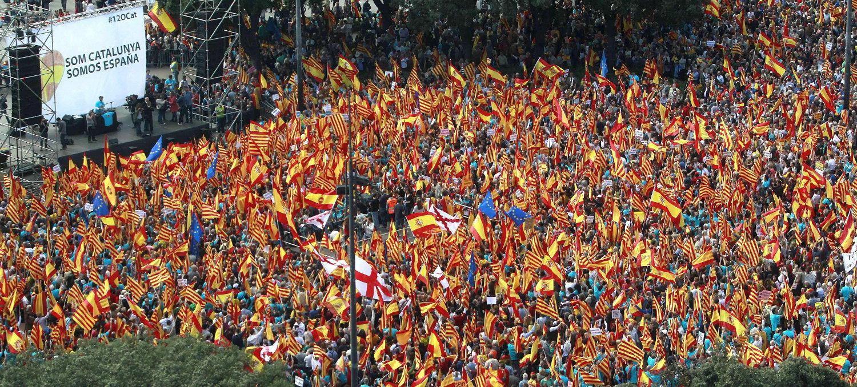 Facilidad para manipular en la red Som-catalunya
