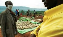 Trabajadores extrayendo de la tierra los restos de una fosa común en Nyamirambo, cerca de Kigali, el 7 de abril de 2000. En el lugar habían sido enterradas al menos 32.000 personas que seis años después de la masacre en Ruanda iban a ser enterradas