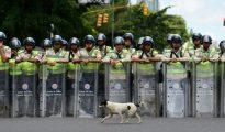Policías antidisturbios durante una manifestación cerca de la Universidad Central de Venezuela el 9 de junio de 2016 en Caracas.