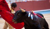 El diestro Morante de la Puebla da un pase con la muleta durante la corrida de la Feria de la Peregina en la plaza de toros de Pontevedra..