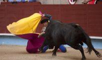El diestro El Fandi recibe a portagayola a su primer toro.
