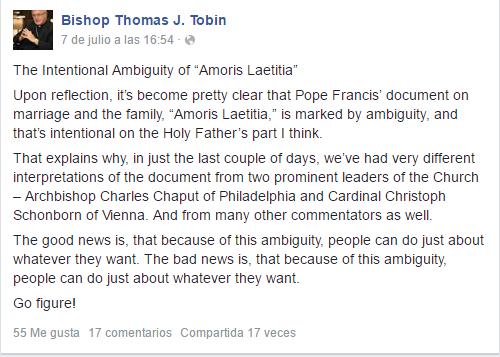 """""""La intencional ambigüedad de Amoris Laetitia"""", según el obispo de Providence, Rhode Island. Afirma que el texto tiene interpretaciones diferentes como el de Arzobispo Chaput de Filadelfia, como del Cardenal Schonbörn de Viena. El Obispo Thomas ha captado el mensaje, claro está. Ahora bien, ¿conclusiones?"""
