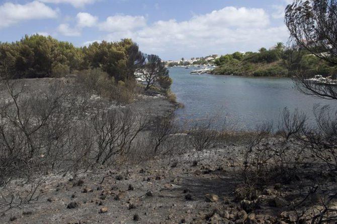 En la imagen estado del terreno tras el incendio en el municipio de Es Mercadal en la costa norte de Menorca.