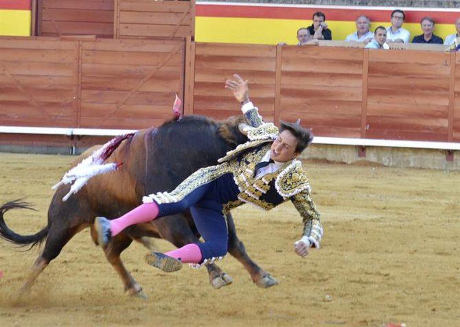 El torero Andrés Roca Rey es cogido por el tercer toro de la tarde en el tercer festejo de la feria de San Antolín de Palencia.