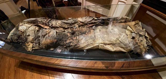 """Los restos de la llamada """"momia número 8"""", identificada como Artemi Semidán y expuesta en el Museo Canario, ha sido estudiada por investiadores del propio museo y la Universidad de las Palmas."""