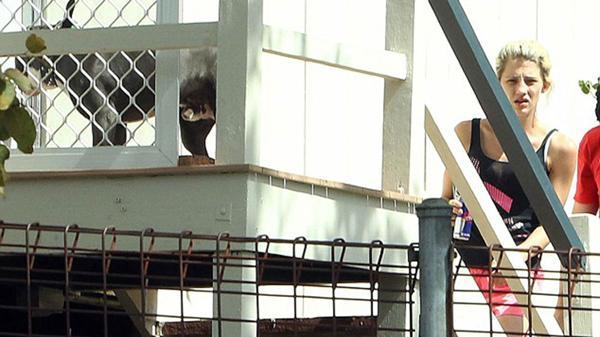 Jenna Driscoll llega a su casa en Brisbane. Allí puede verse al pitbull