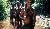 Las técnicas de caza varían entre los pueblos pigmeos, e incluyen arcos y flechas, así como redes y lanzas