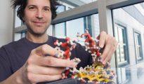 David Baker, investigador de la Universidad de Washington, con un modelo 3D de una de las proteínas no naturales