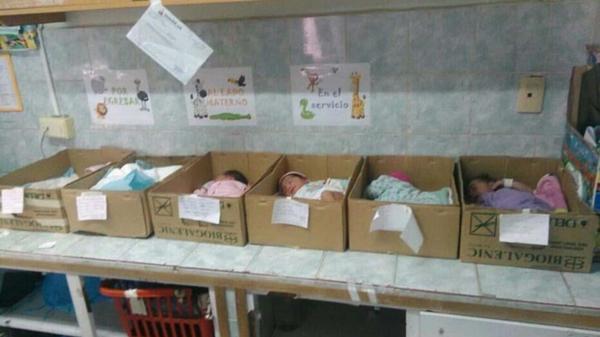 Bebés recién nacidos en cajas de cartón
