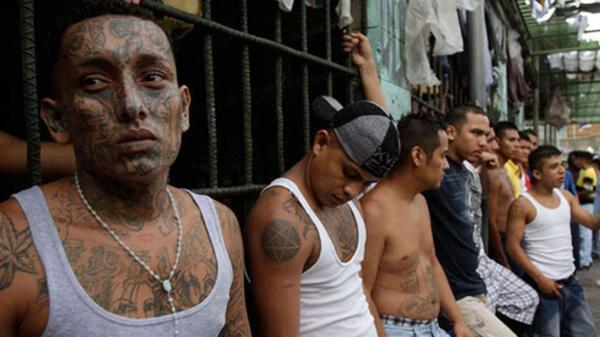 La Mara Salvatrucha y Barrio 18 llevaron su guerra a los hospitales