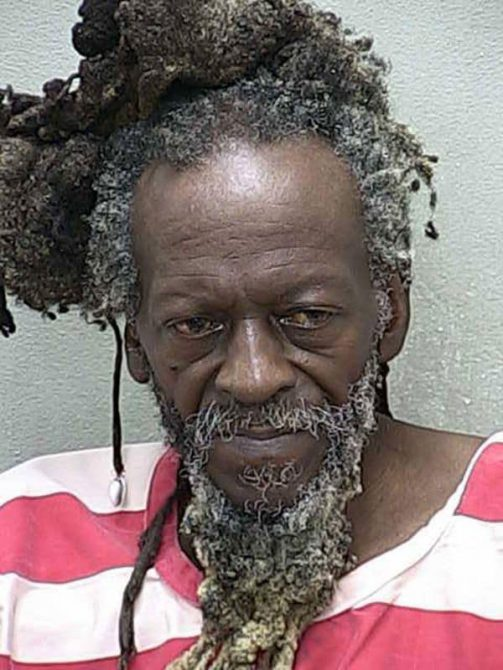 Sydney Allan Markland fue detenido por la policía del Condado de Marion, en el centro de Florida. Está acusado de haber violado a una niña de 8 años
