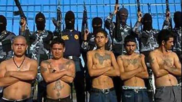 El antiguo y temible cártel de Los Zetas