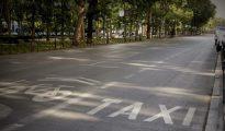 Aspecto que presentaba el Paseo del Prado a primera hora de la mañana sin taxis circulando por la calle.