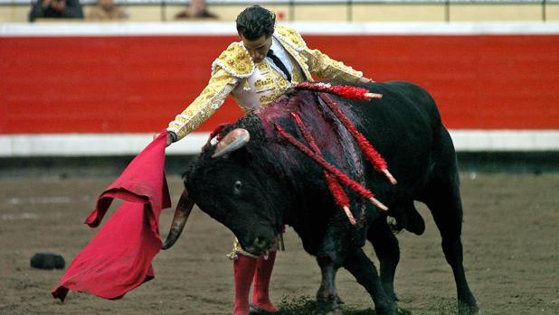 El torero en 2005.