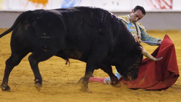 Enrique Ponce, rodilla en tierra con el toro que indultó en la Malagueta