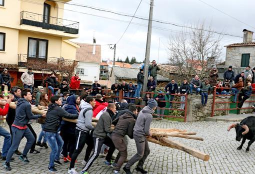 Un grupo de jóvenes sujetan el forcón