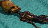 El alienígena de Atacama