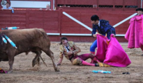 Juan José Padilla, en la arena tras ser cogido por el cuarto toro - Fotos: Mundotoro