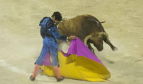 Cayetano, en el coliseo balear