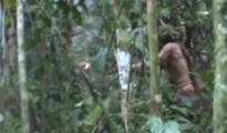 En el vídeo aparece talando un árbol con un hacha/The Gaurdian