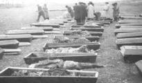 Asesinados del bando nacional en las sacas de Paracuellos, entre ellos 276 menores.