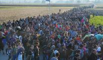 En la imagen, un grupo de migrantes atraviesa unos campos en dirección al campamento de Dobova, Eslovenia, el 26 de octubre de 2015.