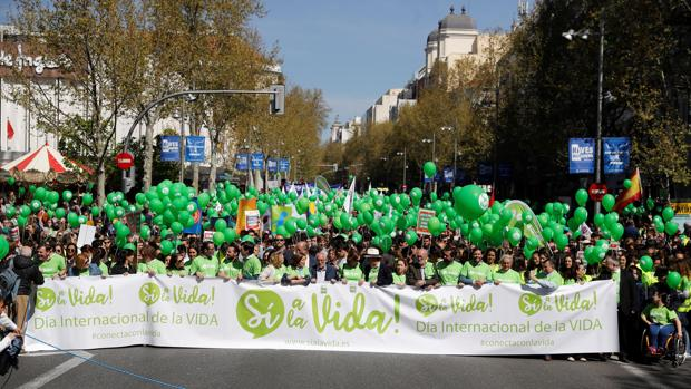 Miles de personas se manifiestan a favor de la vida de manera pacífica este domingo en Madrid